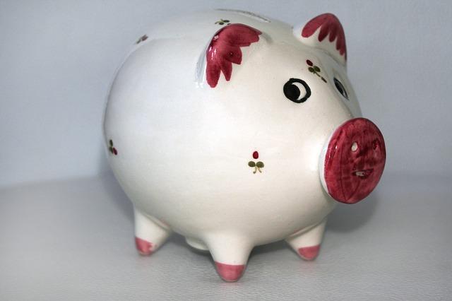 bílé prasátko s růžovým nosem a ušima